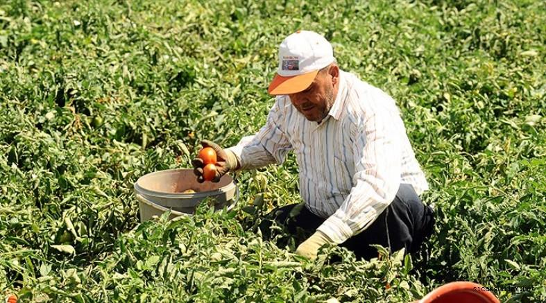 Çiftçileri Sevindiren Haber Geldi! 1 Yıl Süre İle Erteleme Geldi!
